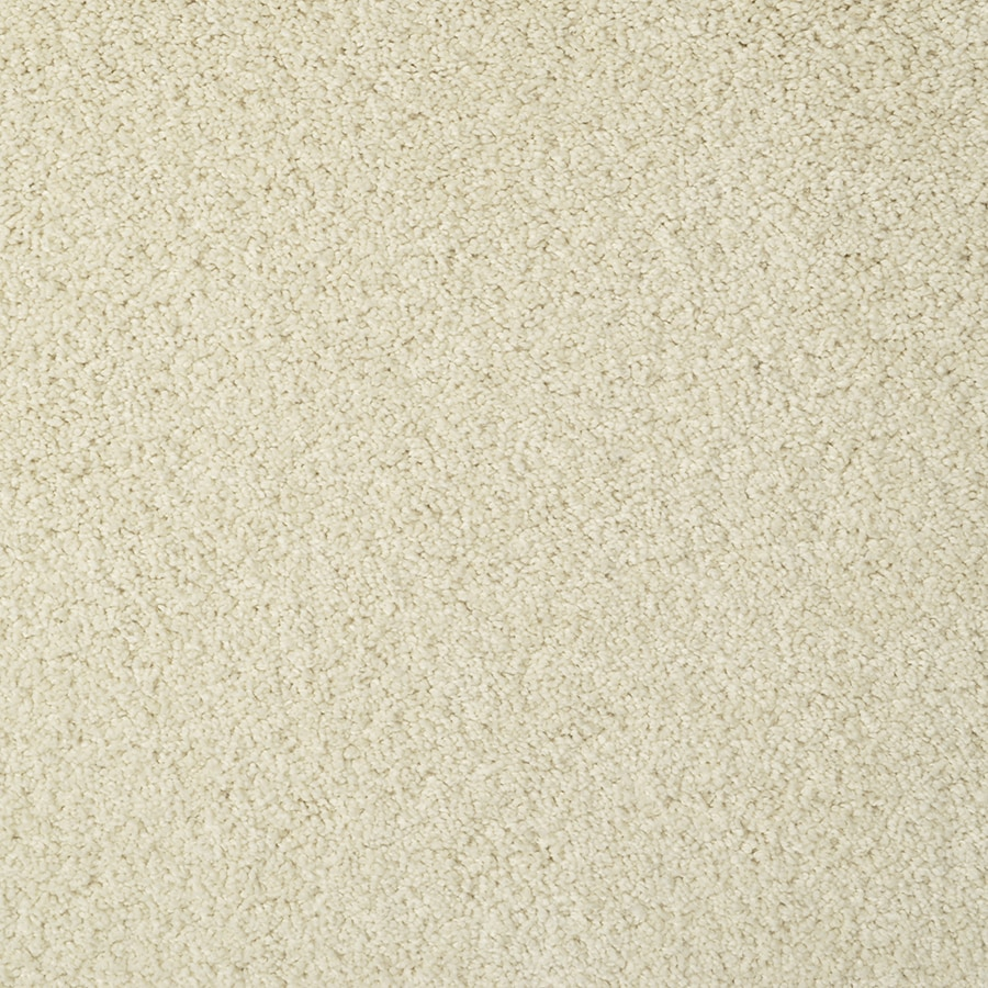 STAINMASTER Best of Class TruSoft Boxwood Cut and Loop Carpet Sample