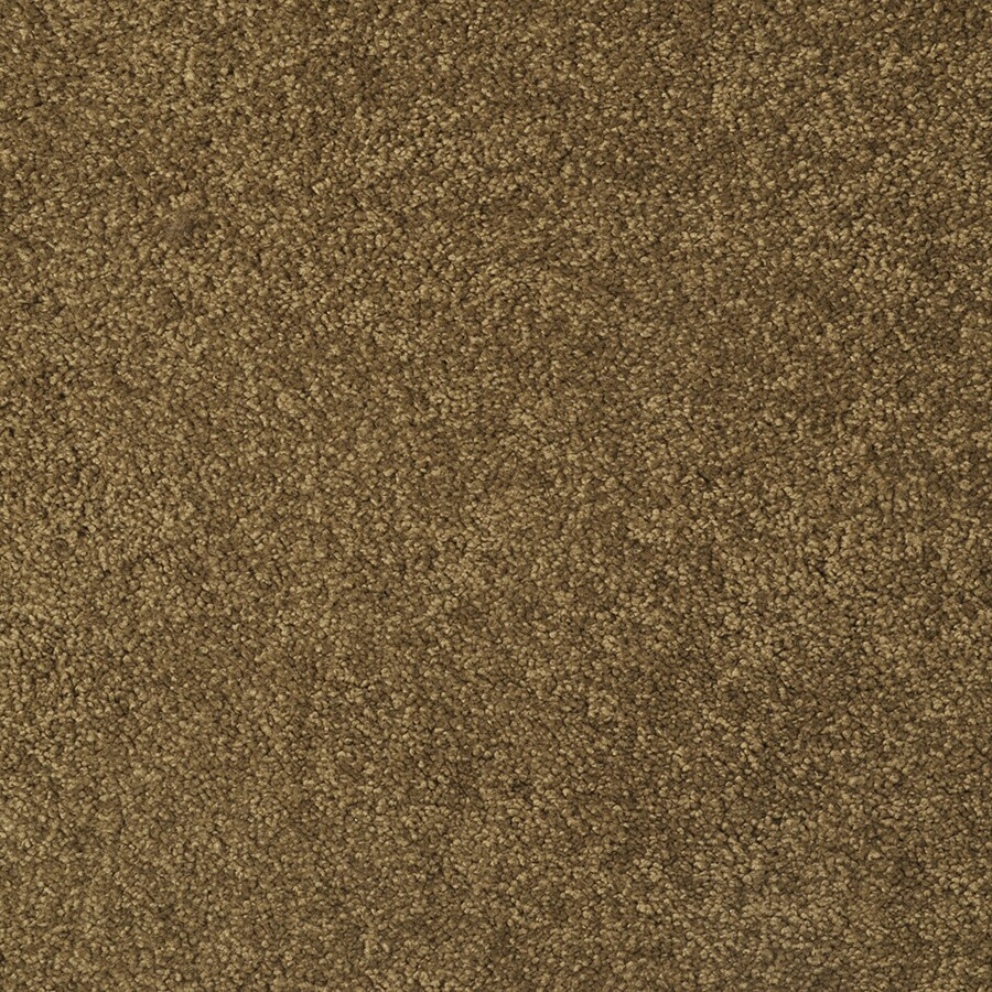 STAINMASTER TruSoft Best Of Class Parakeet Berber/Loop Carpet Sample