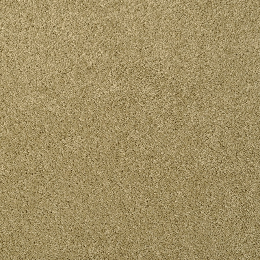 STAINMASTER TruSoft Best of Class Sand Dollar Carpet Sample