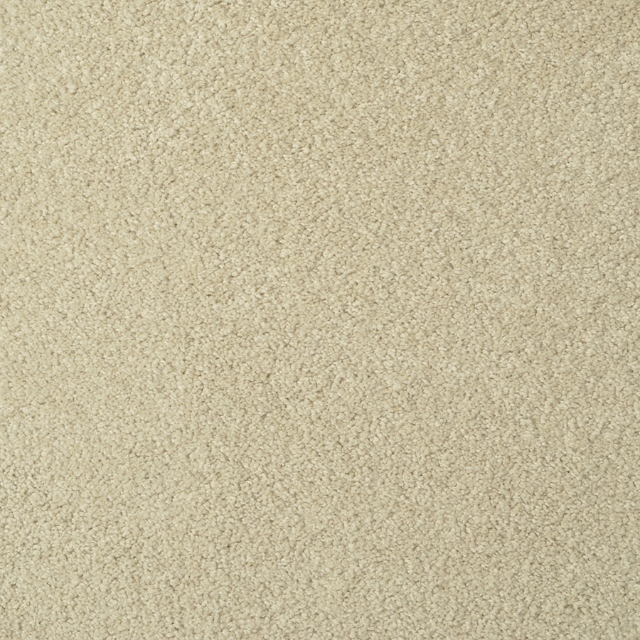 STAINMASTER Best Of Class TruSoft Wild Rye Cut and Loop Carpet Sample