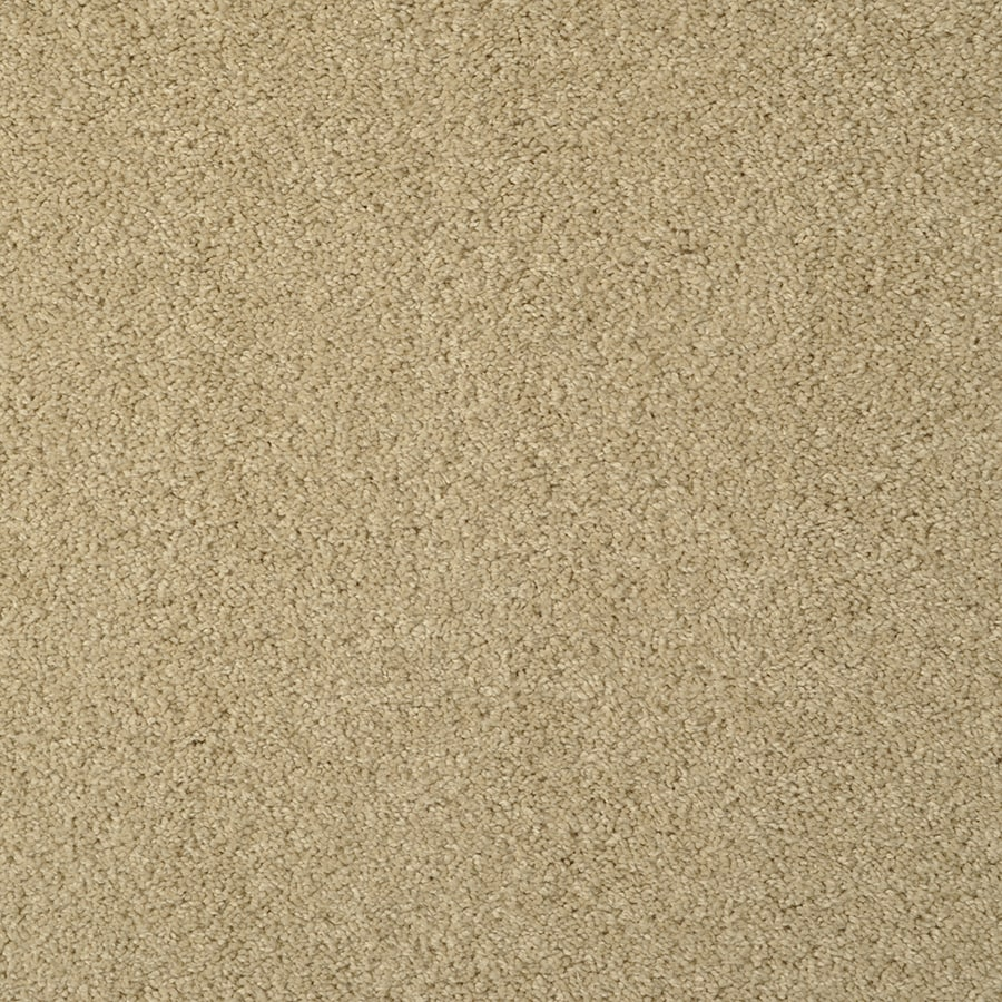 STAINMASTER TruSoft Best Of Class French Toast Berber/Loop Carpet Sample