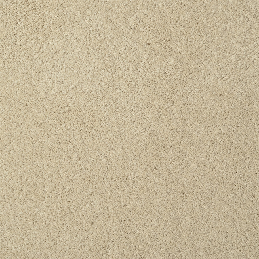 STAINMASTER TruSoft Best Of Class Vermouth Berber/Loop Carpet Sample
