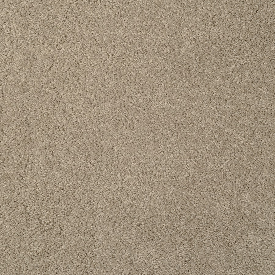 STAINMASTER Best of Class TruSoft Echo Canyon Cut and Loop Carpet Sample