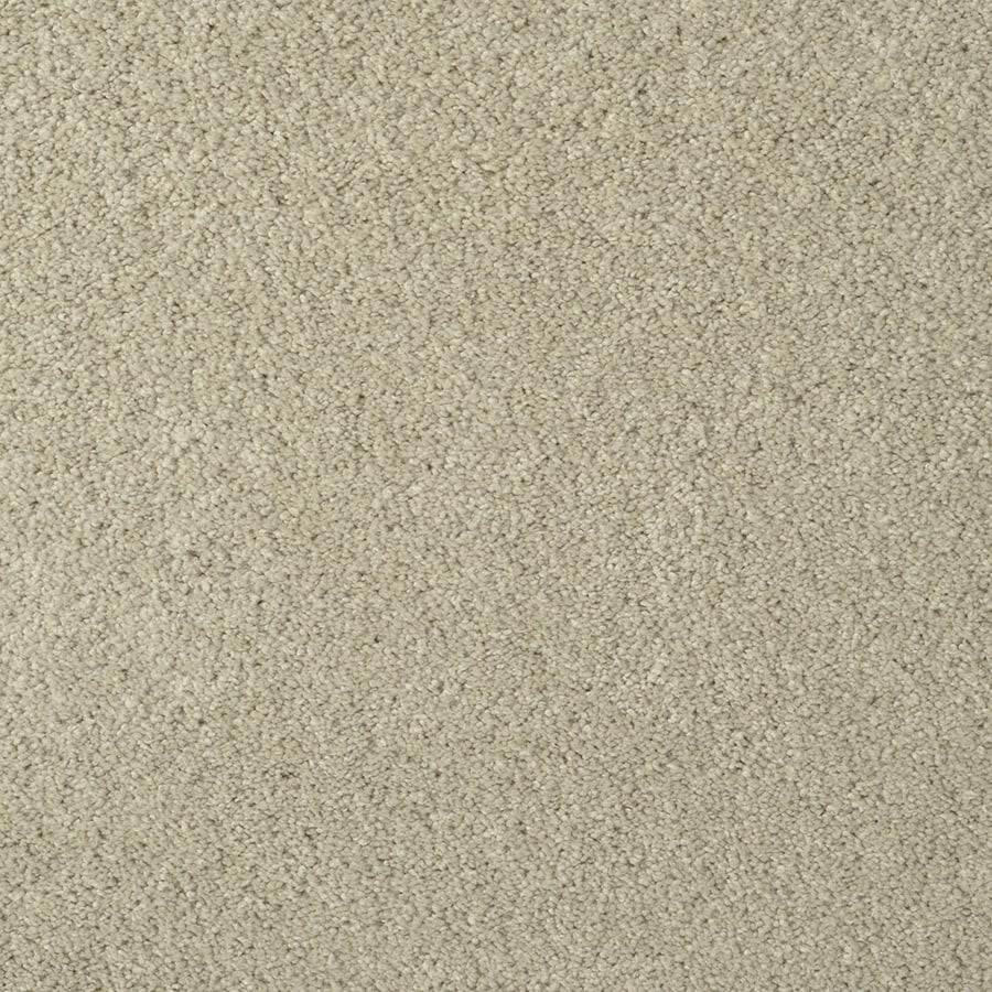 STAINMASTER TruSoft Best Of Class Herb Garden Berber/Loop Carpet Sample
