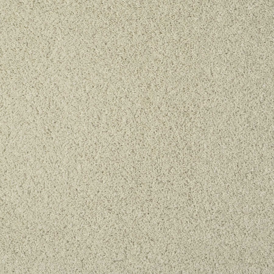 STAINMASTER TruSoft Best of Class Pepper Spice Carpet Sample