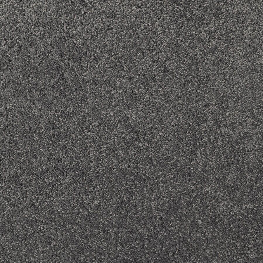 STAINMASTER TruSoft Best of Class Spanish Stone Carpet Sample