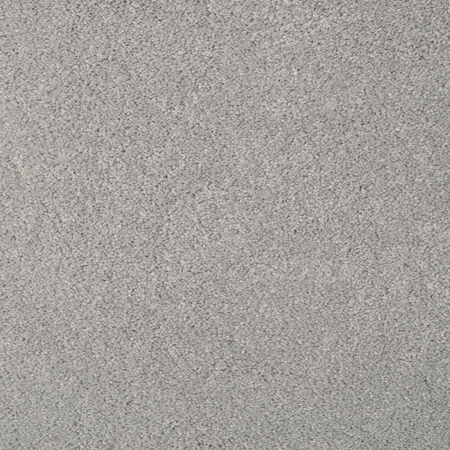 STAINMASTER Best Of Class TruSoft Breathtaking Cut and Loop Carpet Sample