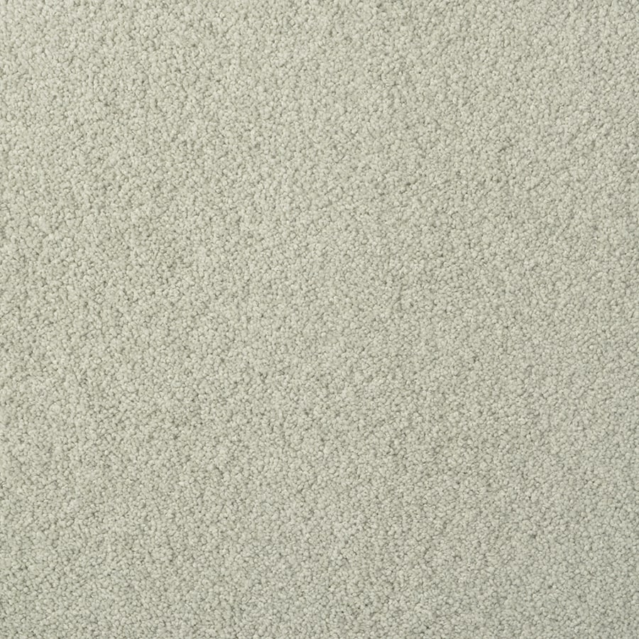 STAINMASTER TruSoft Best of Class Pastel Carpet Sample