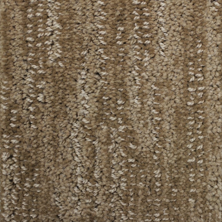 STAINMASTER Essentials Imagination Warm Cider Carpet Sample
