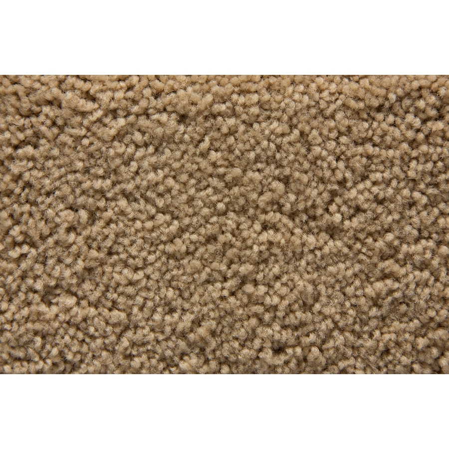 STAINMASTER Active Family Savoy Eagle Plush Carpet Sample