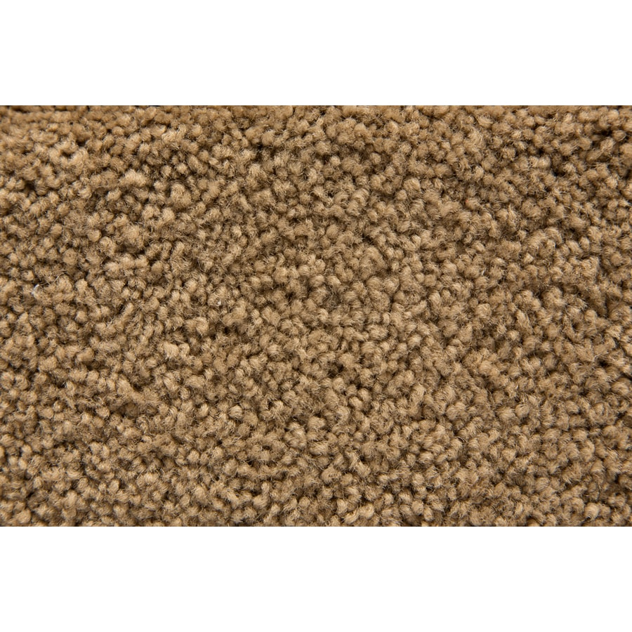 STAINMASTER Savoy Active Family Bungalow Plus Carpet Sample