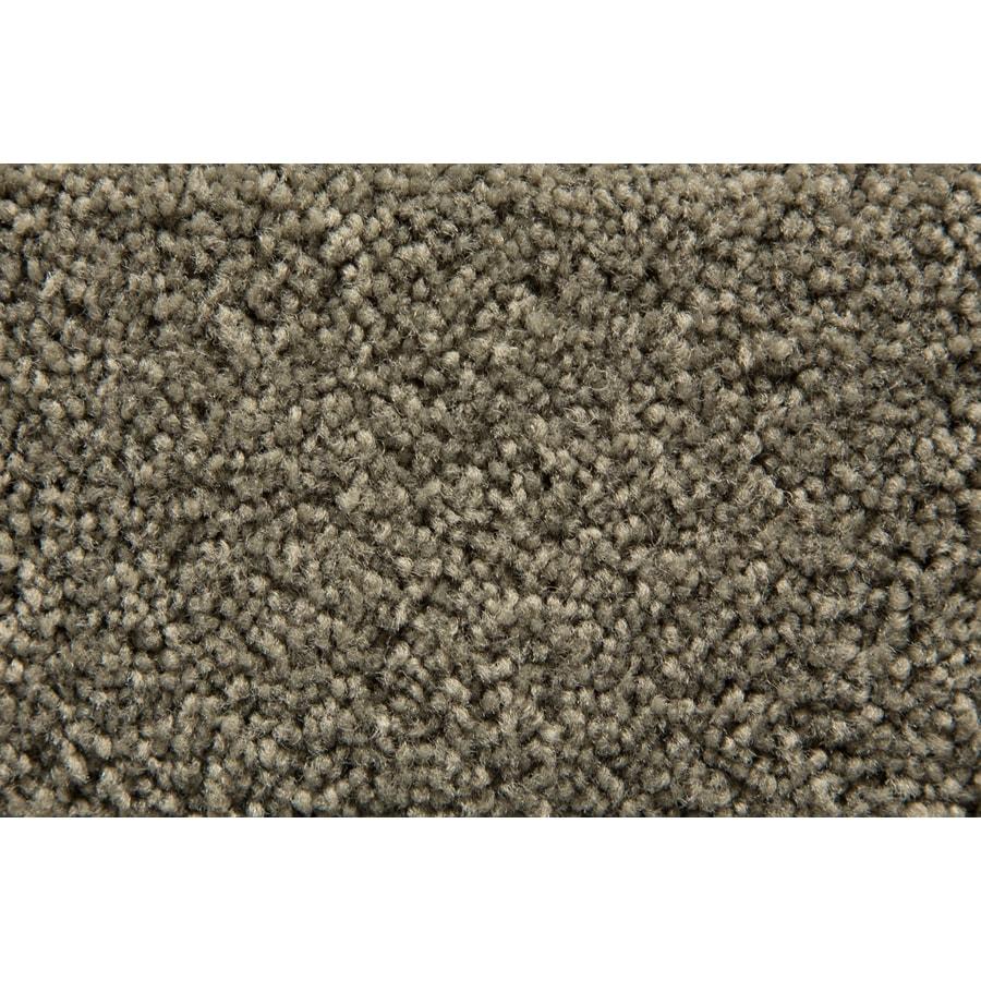 STAINMASTER Savoy Active Family Tundra Plus Carpet Sample
