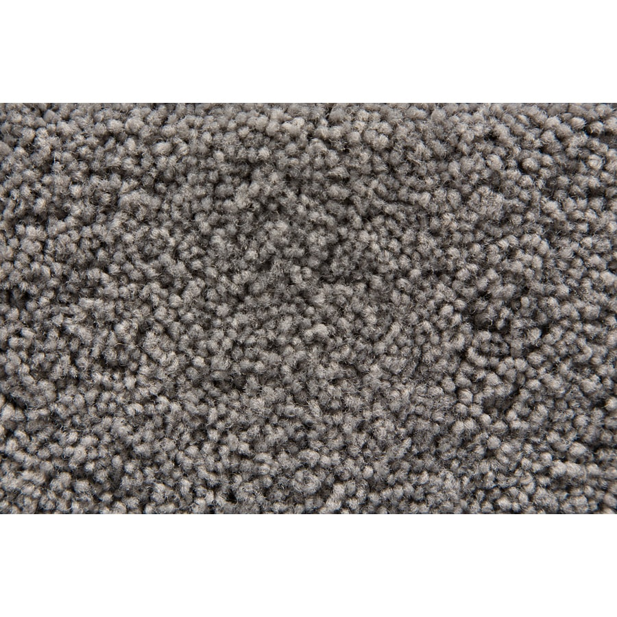 STAINMASTER Savoy Active Family Fog Plush Carpet Sample