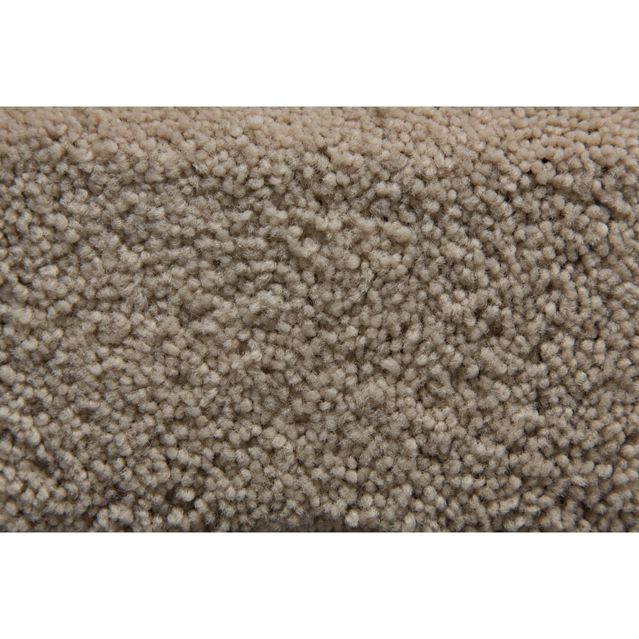 STAINMASTER Active Family Savoy Sanctuary Carpet Sample