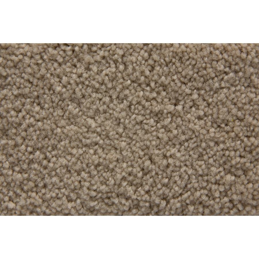 STAINMASTER Savoy Active Family Tannery Plus Carpet Sample