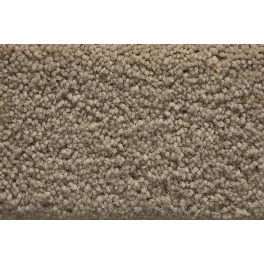 STAINMASTER Savoy Active Family Playa Plus Carpet Sample