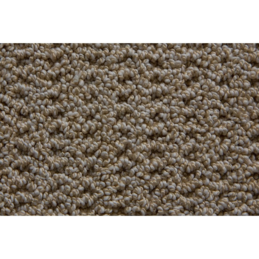 STAINMASTER Compassion TruSoft Milkshake Berber Carpet Sample