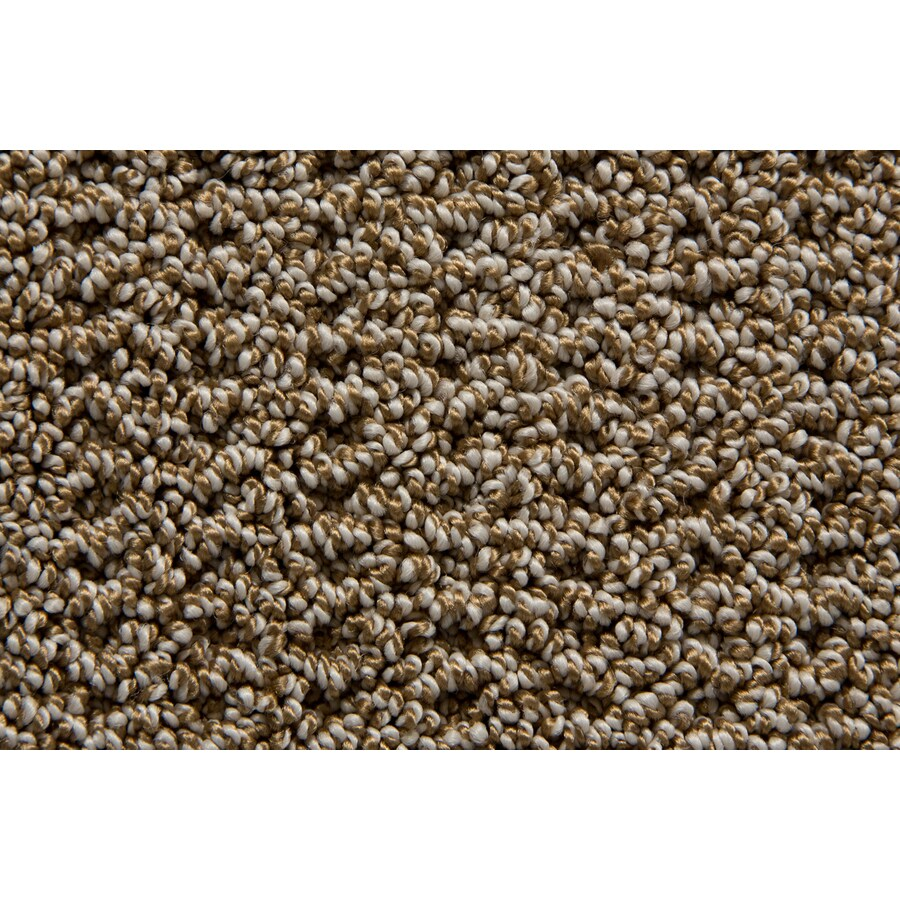 STAINMASTER TruSoft Compassion Beacon Carpet Sample