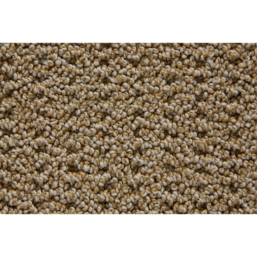 STAINMASTER Compassion TruSoft Sparrow Berber Carpet Sample