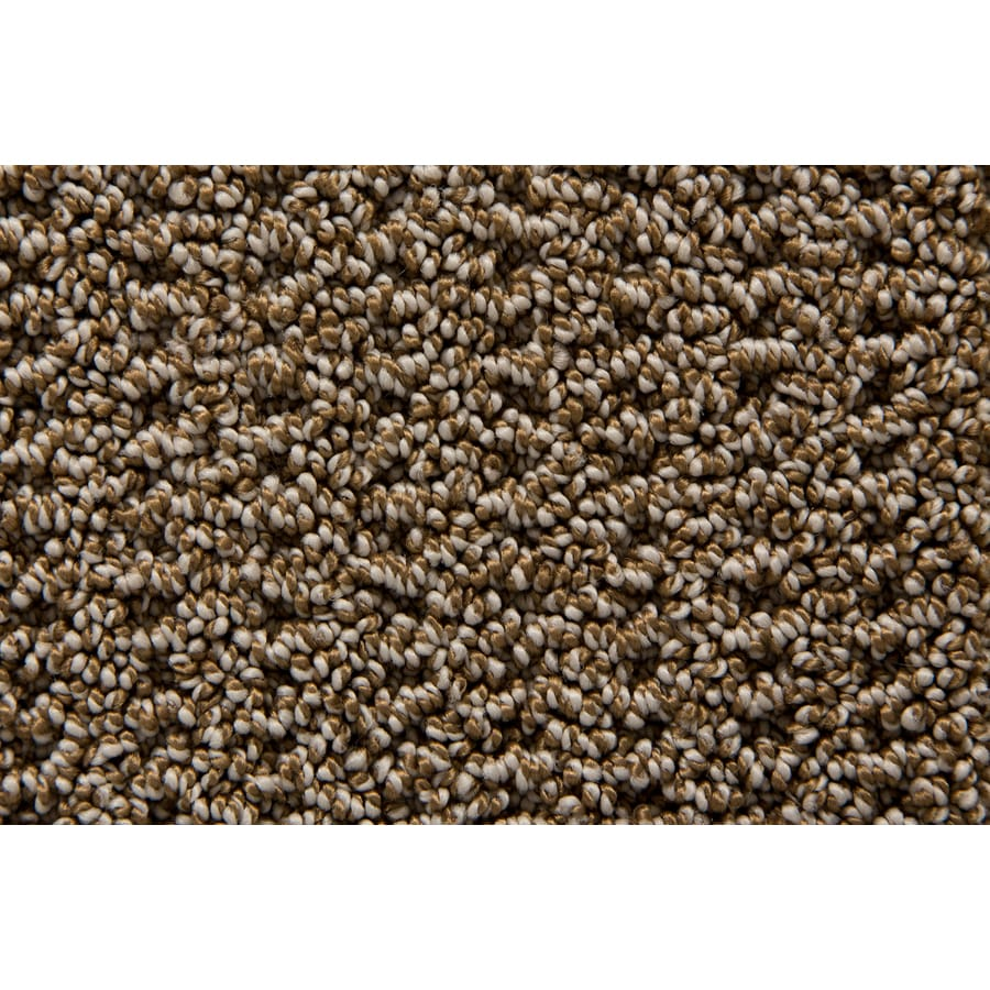 STAINMASTER Compassion TruSoft Stonehenge Berber Carpet Sample