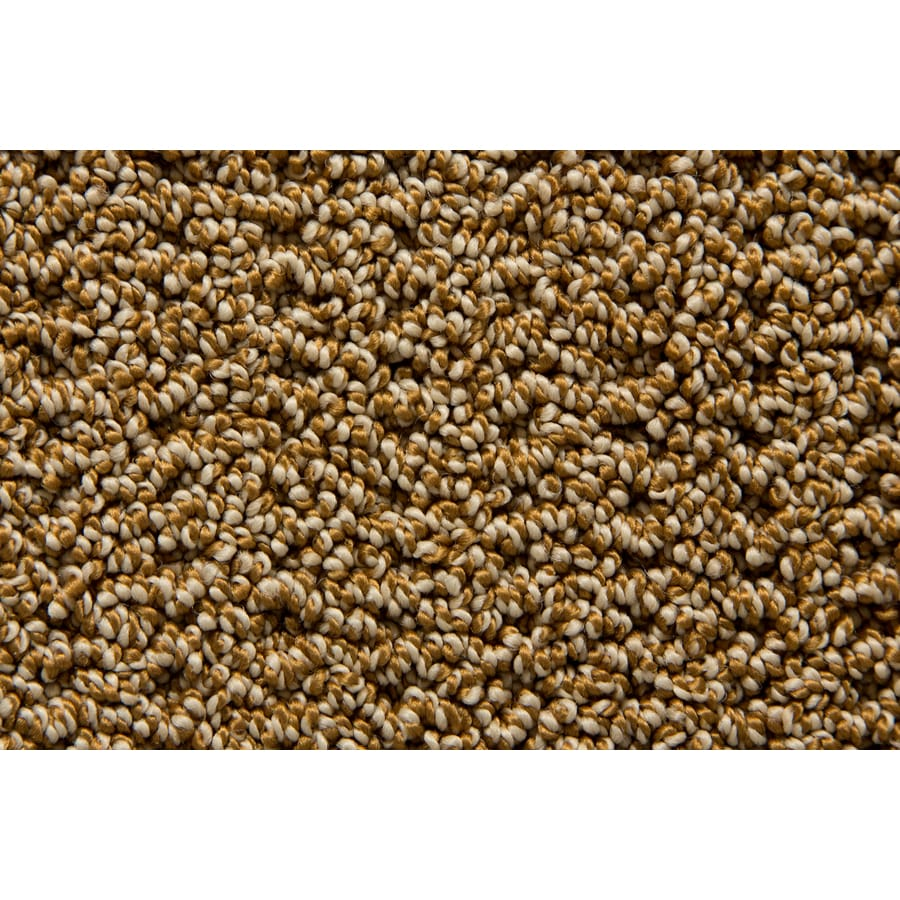 STAINMASTER Compassion TruSoft Woodbark Berber Carpet Sample