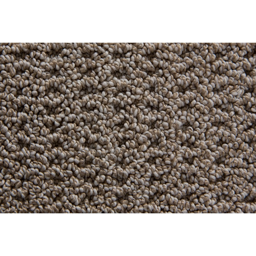 STAINMASTER Compassion TruSoft Flannel Berber Carpet Sample
