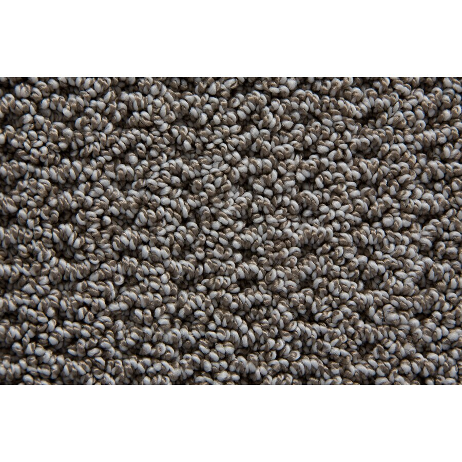 STAINMASTER TruSoft Compassion Tweed Carpet Sample
