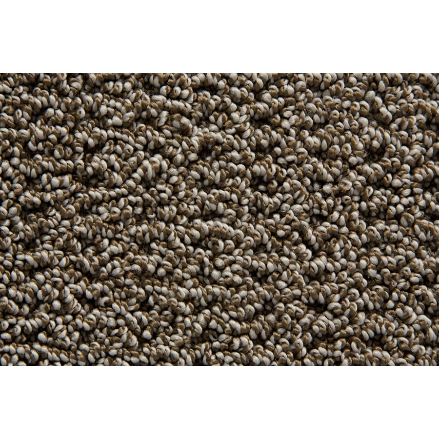 STAINMASTER Compassion TruSoft London Berber Carpet Sample