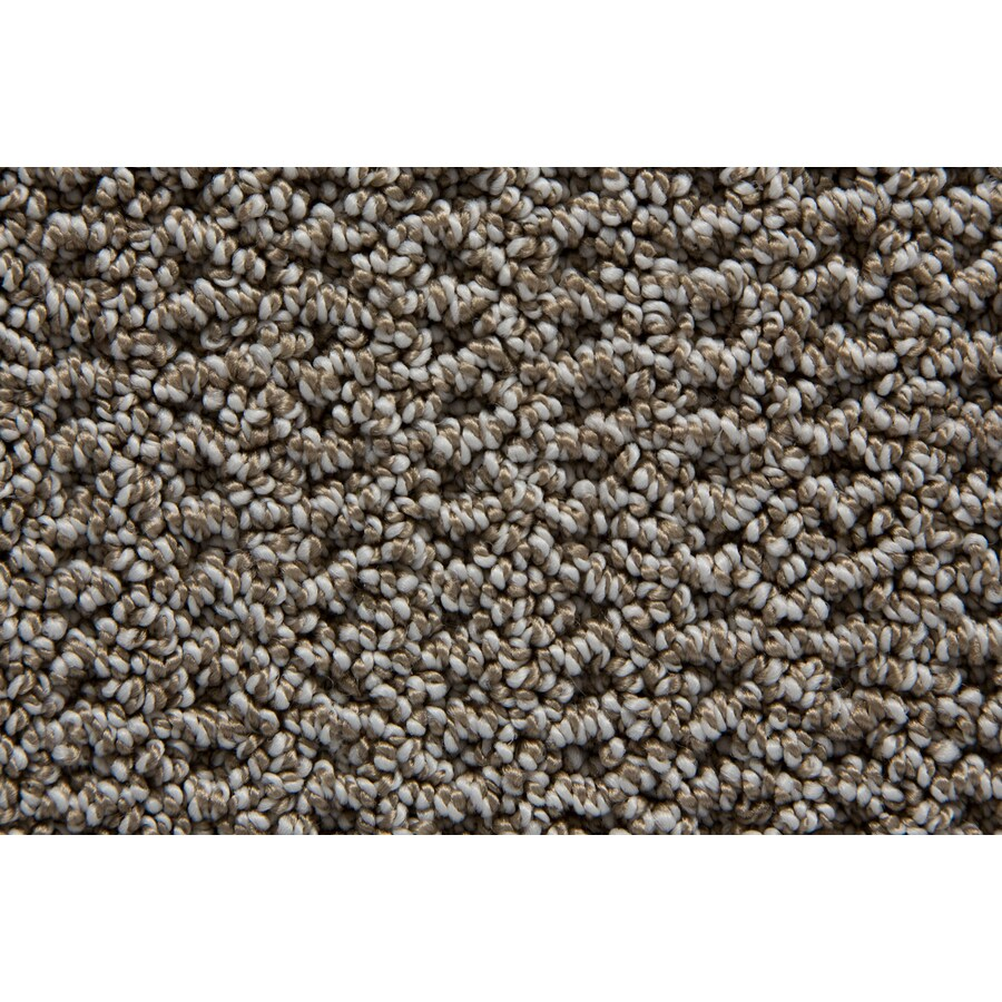 STAINMASTER Compassion TruSoft Stardust Berber Carpet Sample