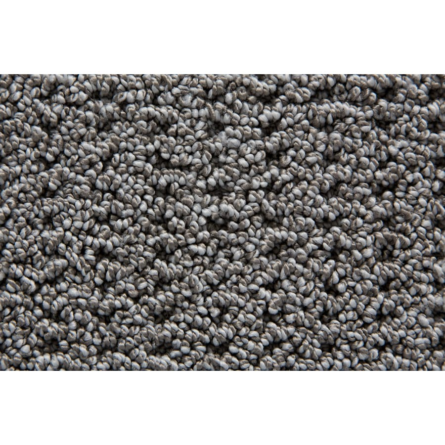 STAINMASTER Compassion TruSoft Thunder Berber Carpet Sample