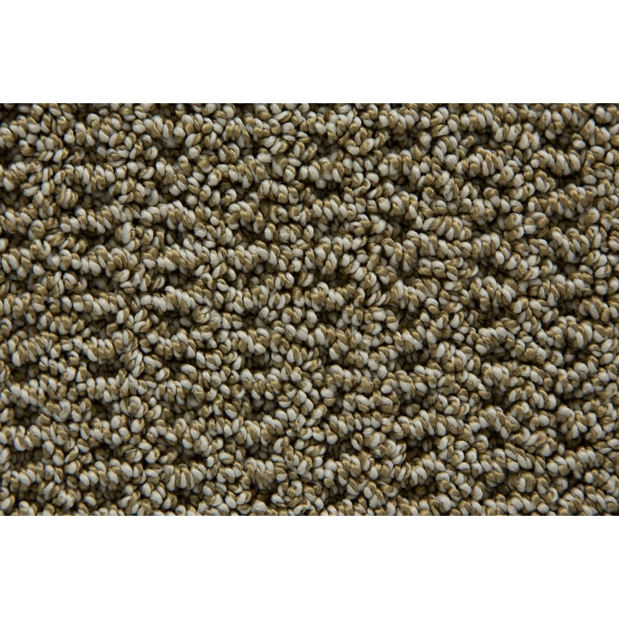 STAINMASTER Compassion TruSoft Alpine Berber Carpet Sample