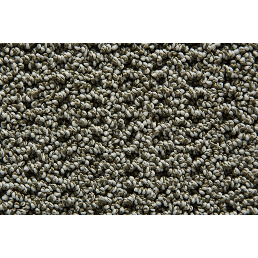 STAINMASTER Compassion TruSoft Shamrock Berber Carpet Sample