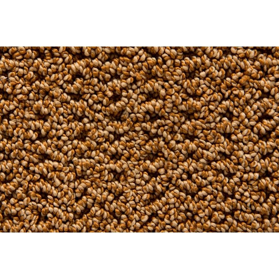 STAINMASTER Compassion TruSoft Sachet Berber Carpet Sample