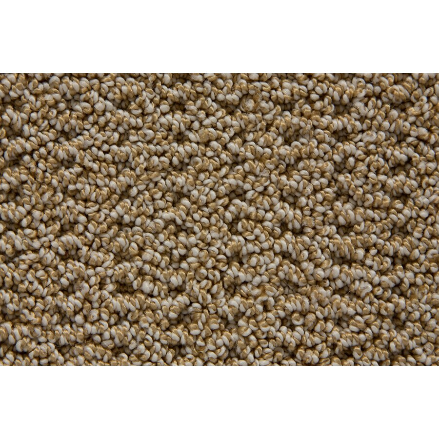 STAINMASTER Merriment TruSoft Sparrow Berber Carpet Sample