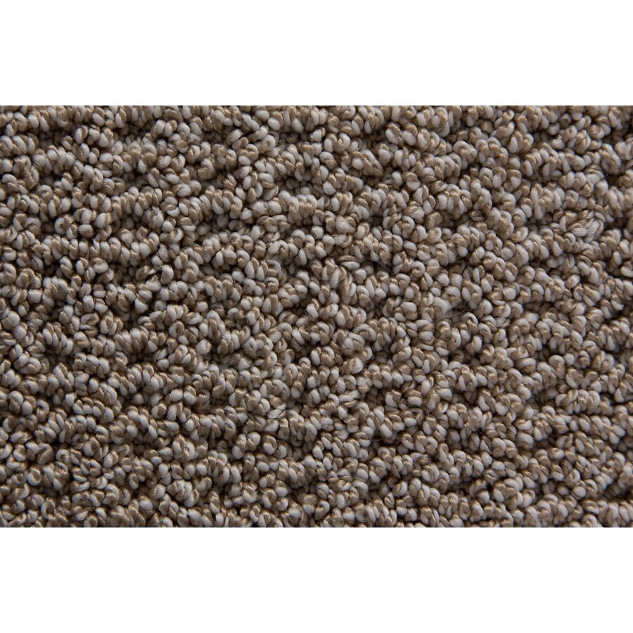 STAINMASTER Merriment TruSoft Flannel Berber Carpet Sample