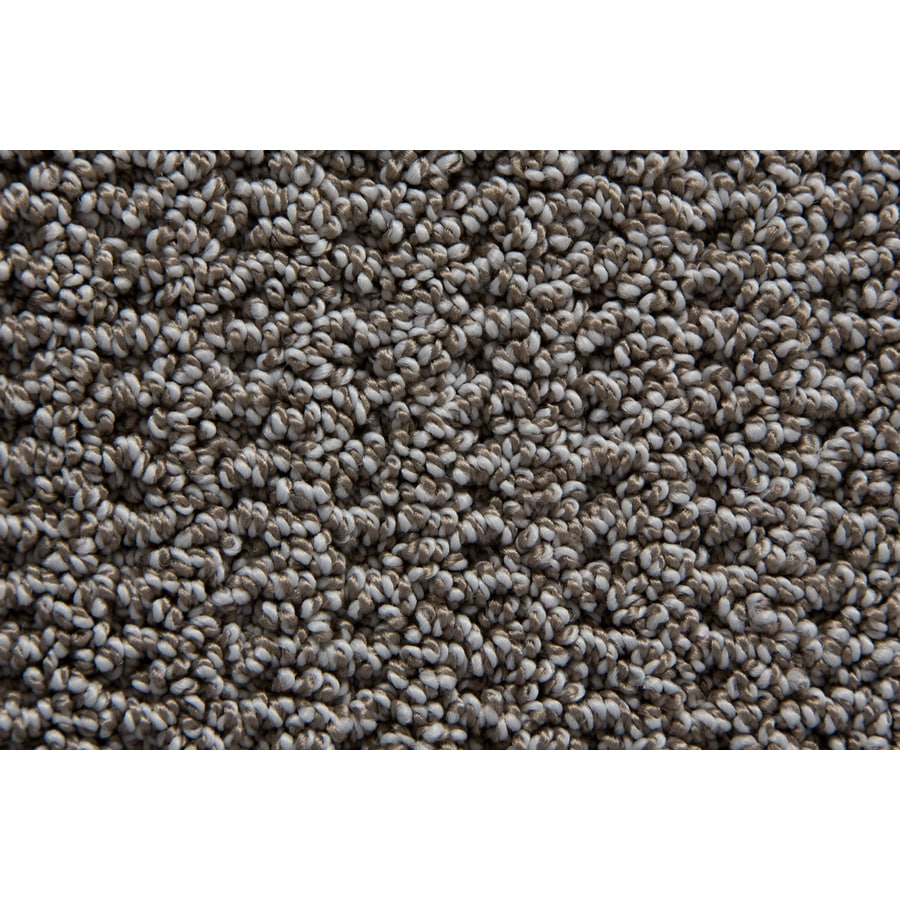STAINMASTER Merriment TruSoft Tweed Berber Carpet Sample