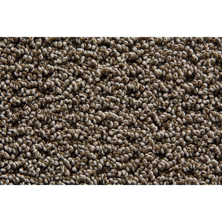 STAINMASTER Merriment TruSoft London Berber Carpet Sample