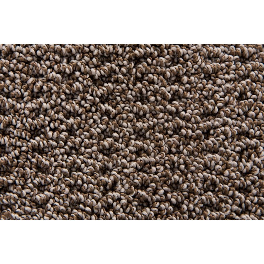 STAINMASTER Merriment TruSoft Burlwood Berber Carpet Sample