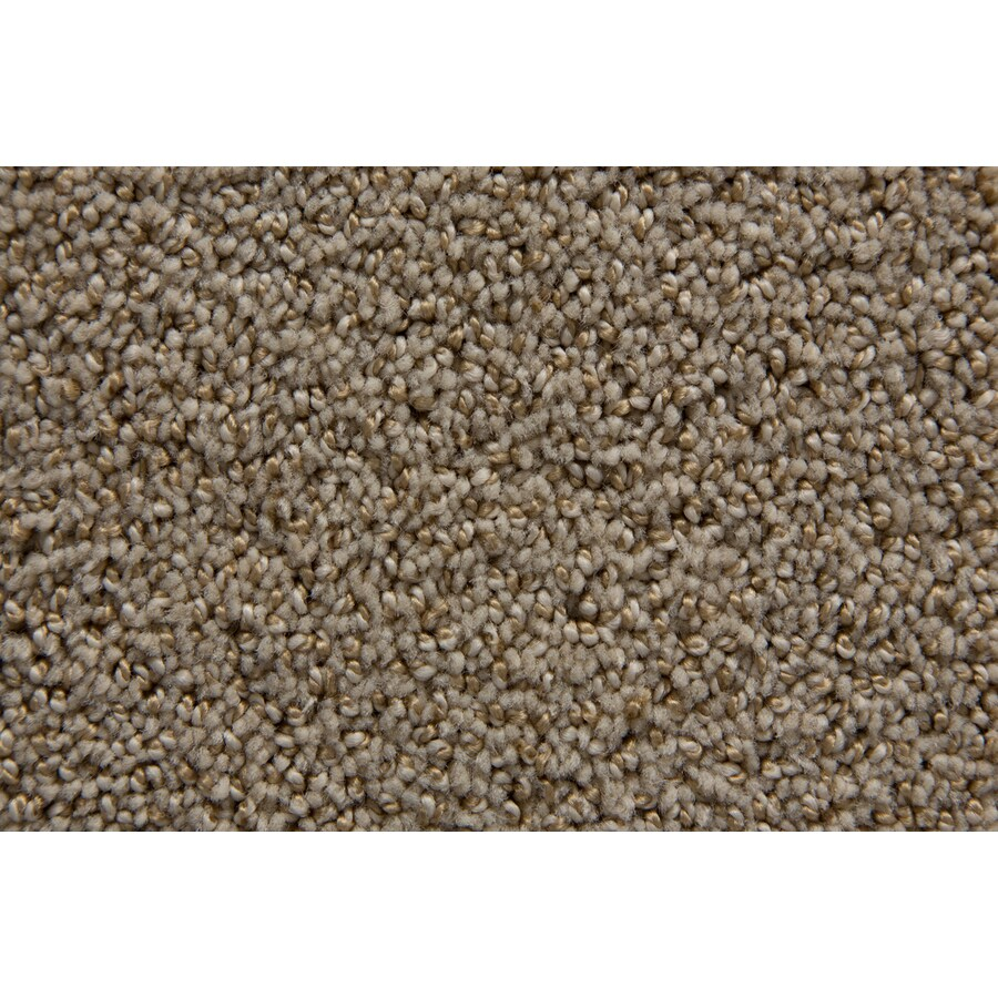 STAINMASTER Mysterious TruSoft Travertine Cut and Loop Carpet Sample
