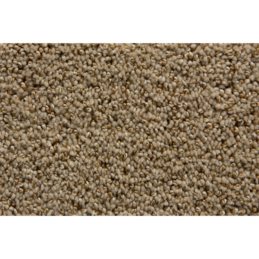 STAINMASTER Mysterious TruSoft Limestone Cut and Loop Carpet Sample