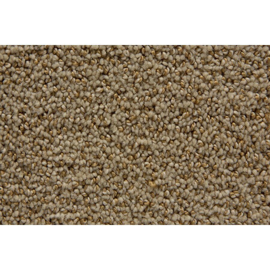 STAINMASTER Mysterious TruSoft Thatch Cut and Loop Carpet Sample