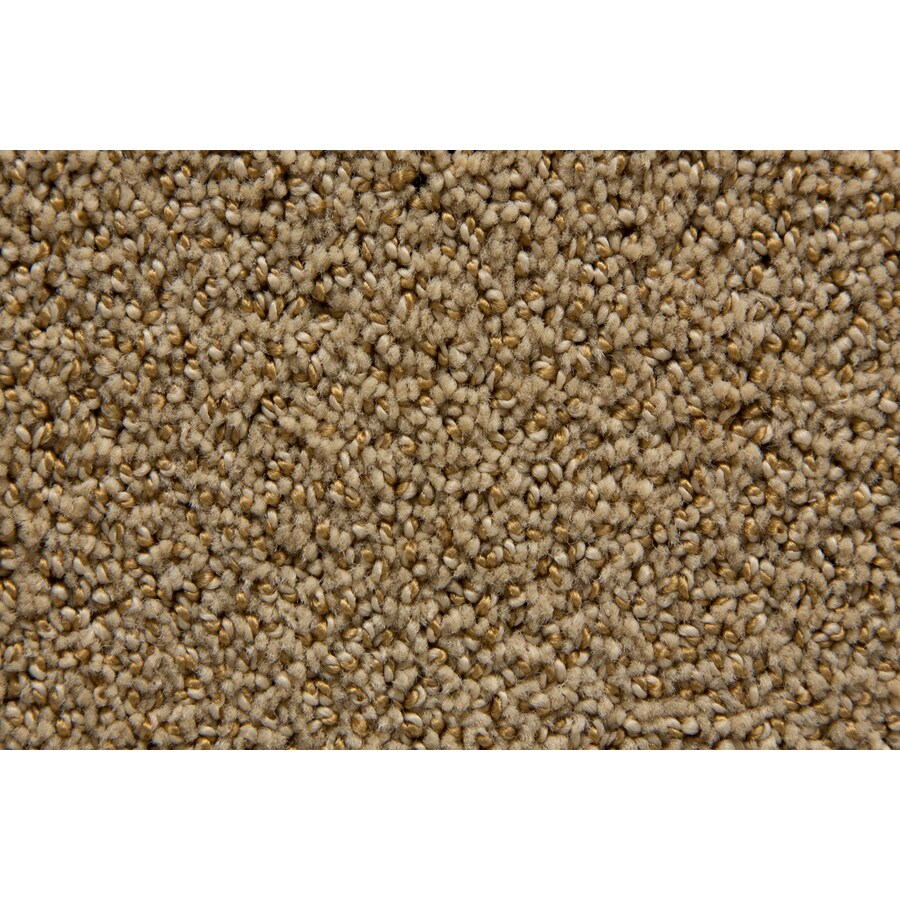 STAINMASTER Mysterious TruSoft Wicker Cut and Loop Carpet Sample