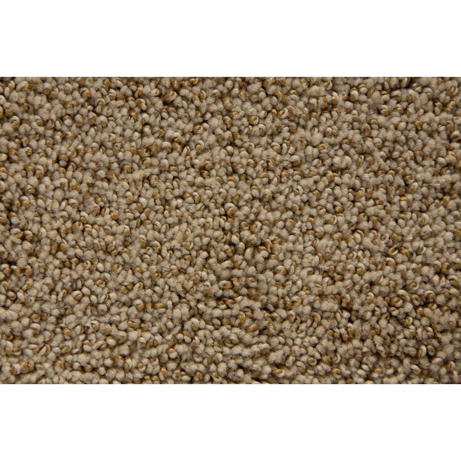 STAINMASTER Mysterious TruSoft Blonde Cut and Loop Carpet Sample