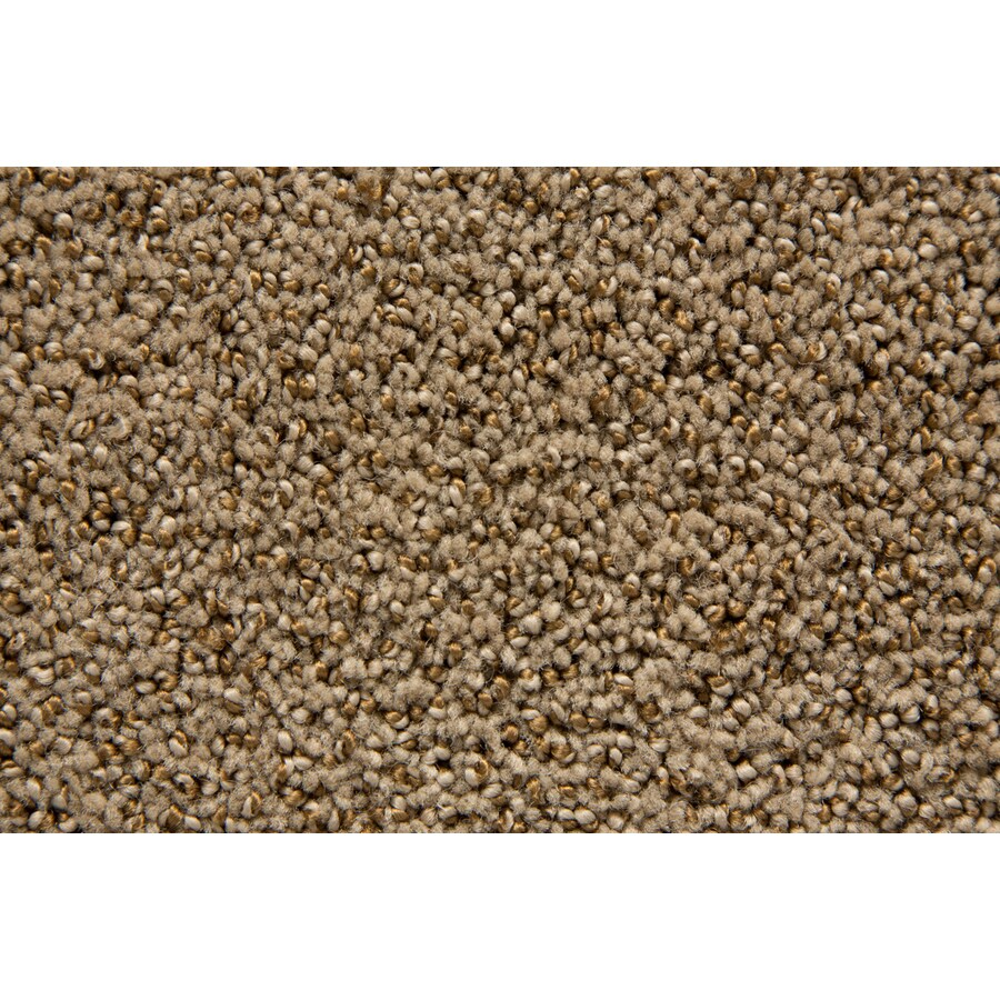 STAINMASTER Mysterious TruSoft Pyramid Cut and Loop Carpet Sample