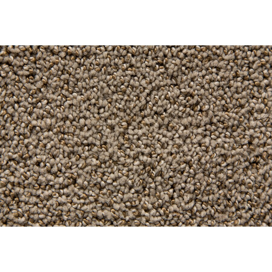 STAINMASTER Mysterious TruSoft Foxhunt Cut and Loop Carpet Sample