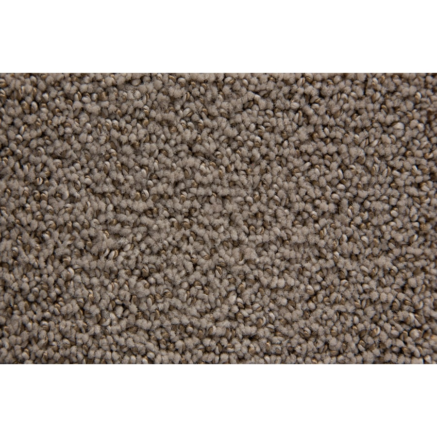 STAINMASTER Mysterious TruSoft Safari Cut and Loop Carpet Sample