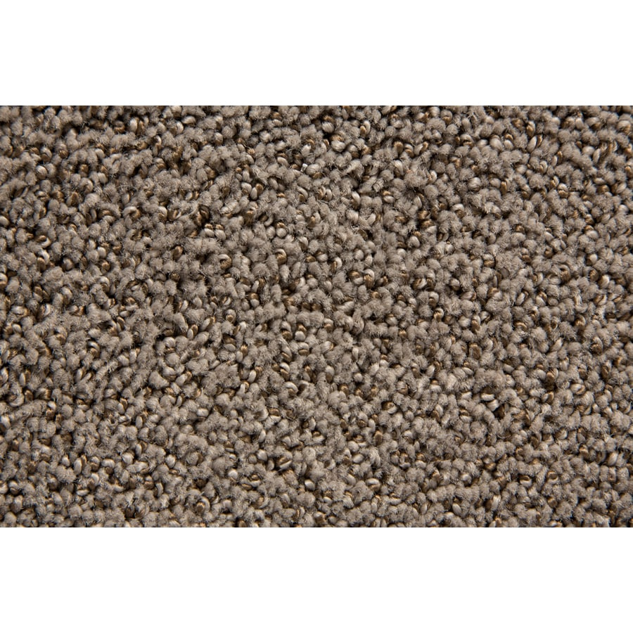STAINMASTER Mysterious TruSoft Armada Cut and Loop Carpet Sample
