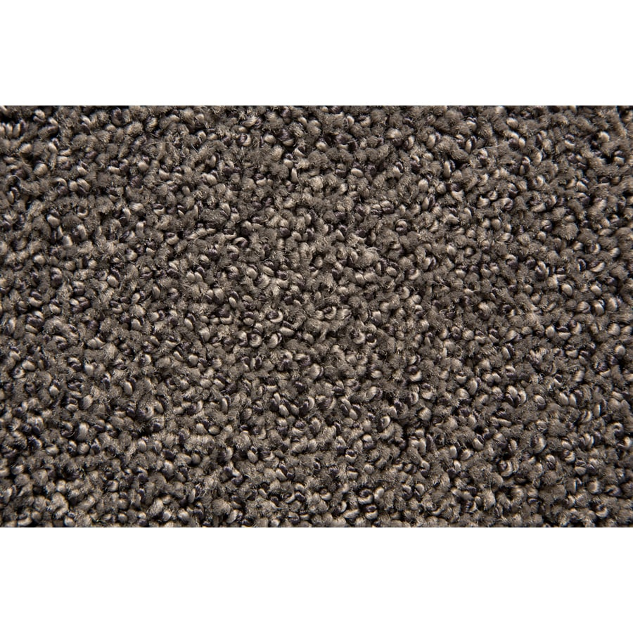 STAINMASTER Mysterious TruSoft Softique Cut and Loop Carpet Sample