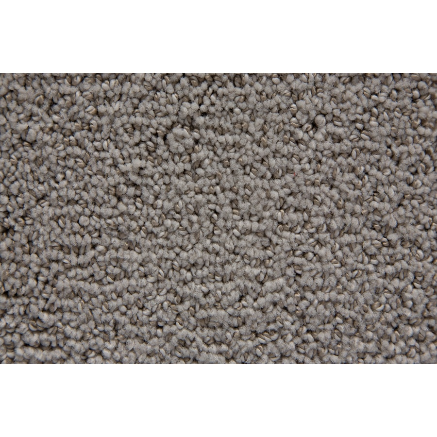 STAINMASTER TruSoft Mysterious Twill Berber/Loop Carpet Sample