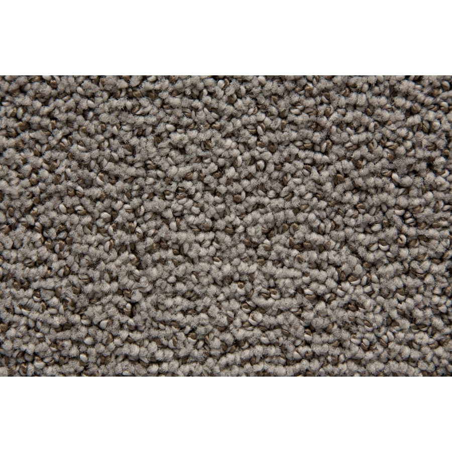 STAINMASTER Mysterious TruSoft Hearth Cut and Loop Carpet Sample